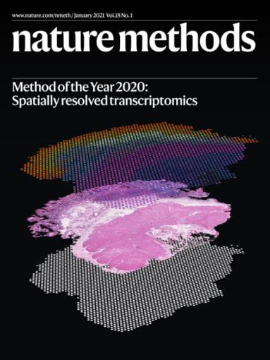 Cover of Nature Methods Volume 18 Issue 1. (Image: Ludvig Larsson, Natalie Stakenborg, Joakim Lundeberg and Guy Boeckxstaens Cover Design: Thomas Phillips)
