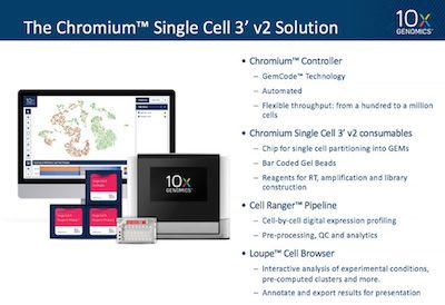 Single cell training, chapter 1