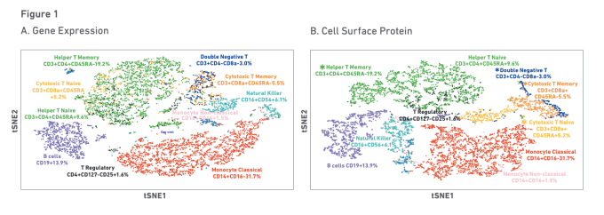 Figure 1. t-Distributed Stochastic Neighbor Embedding (tSNE) projections of ~8000 peripheral blood mononuclear cells (PBMCs), using the Single Cell Gene Expression Solution (A, B). Every dot is a single cell and cells are clustered together based on their gene expression and/or protein expression profiles. Cell annotation was performed manually by reviewing the highly expressed genes/proteins in each cluster and assigning a cell type based on the published literature. CREDIT: 10x Genomics, LIT000046 RevA Immunology Capabilities Brochure