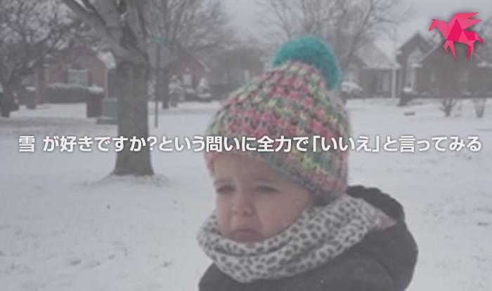 雪 が好きですか?という問いに全力で「いいえ」と言ってみる