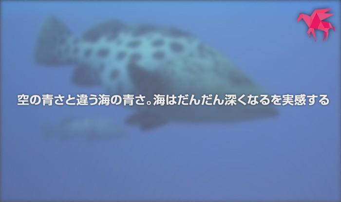 空の青さと違う海の青さ。海はだんだん深くなるを実感する