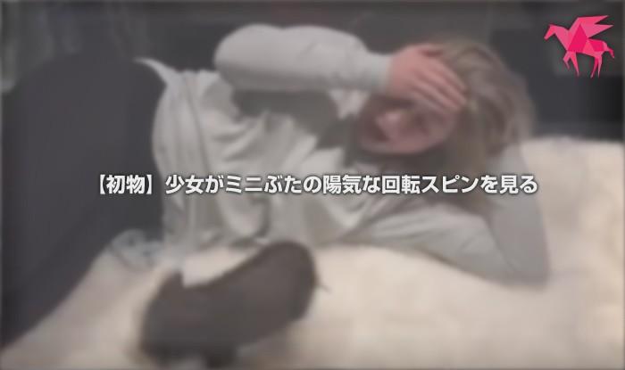 【初物】少女がミニぶたの陽気な回転スピンを見る