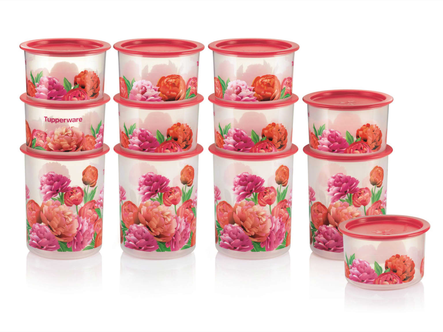 Blooming Peonies One Touch Set