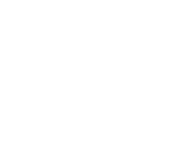 DEX Protection Logo