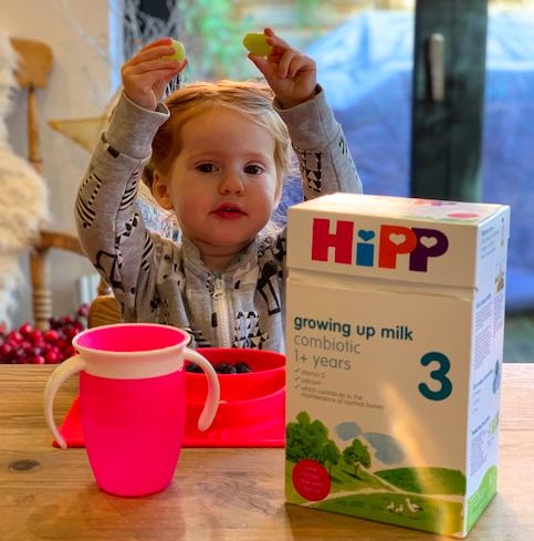 Hipp Organic Growing Up Milk