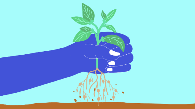 Blue hand grabbing green plant with roots out of the ground in a light blue background.