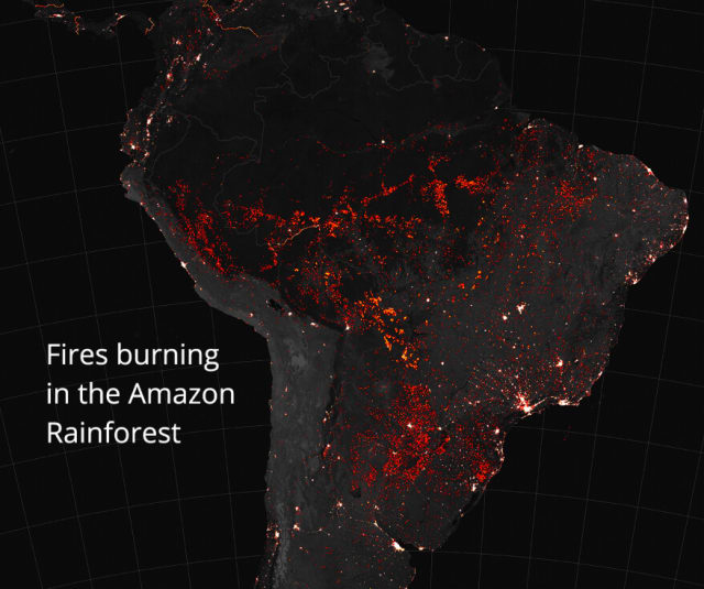 Picture of fires in the amazon rainforest