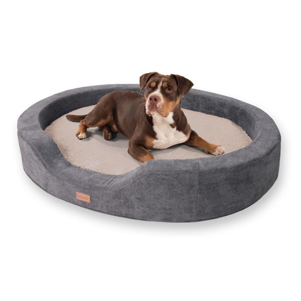 Lotte Hundekörbchen Hundekissen, Beige, Größe: XL