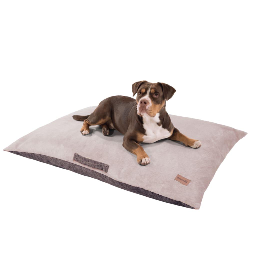 Henry Hundebett Hundematte, Beige, Größe: XL