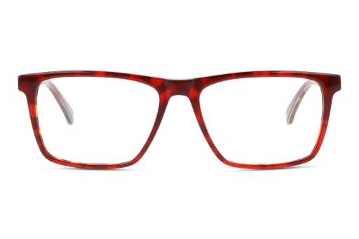 Brille Ted Baker TB8217 259