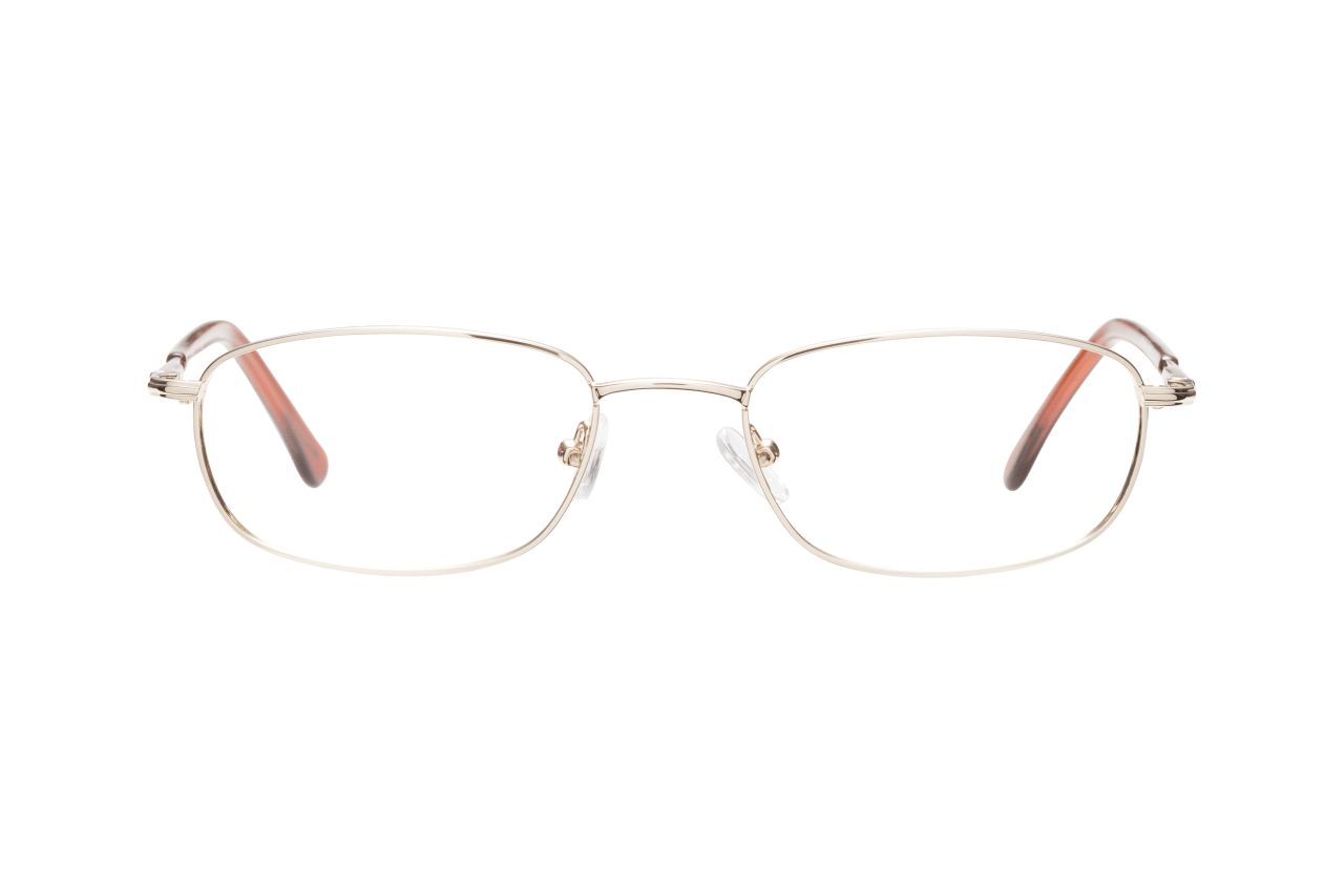 Brille GV Library 131825