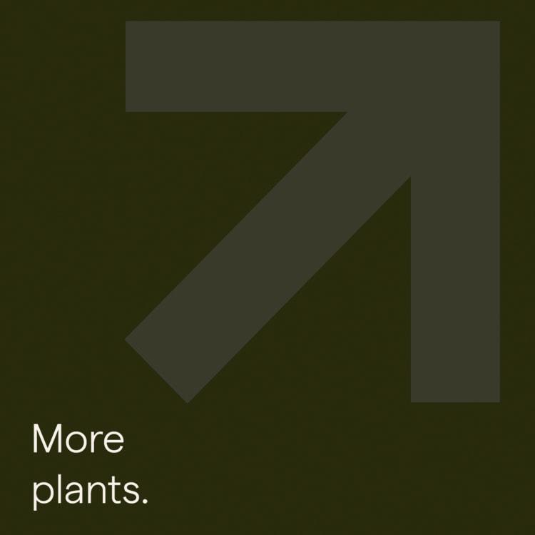 More-Plants-Square