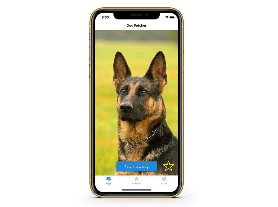 Dog Fetcher on an iPhone XR