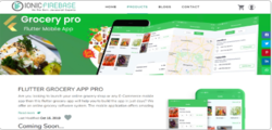 Flutter Grocery App - 2
