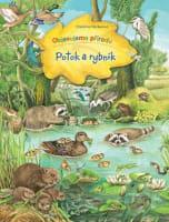 Potok a rybník