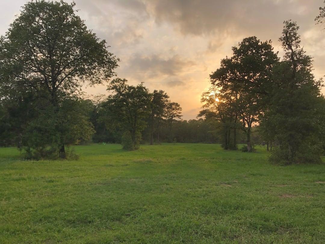 A true escape: Domovina Ranch in Smithville