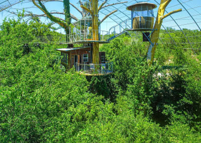 Unique hotels: Sleeping in a treehouse at Cypress Valley