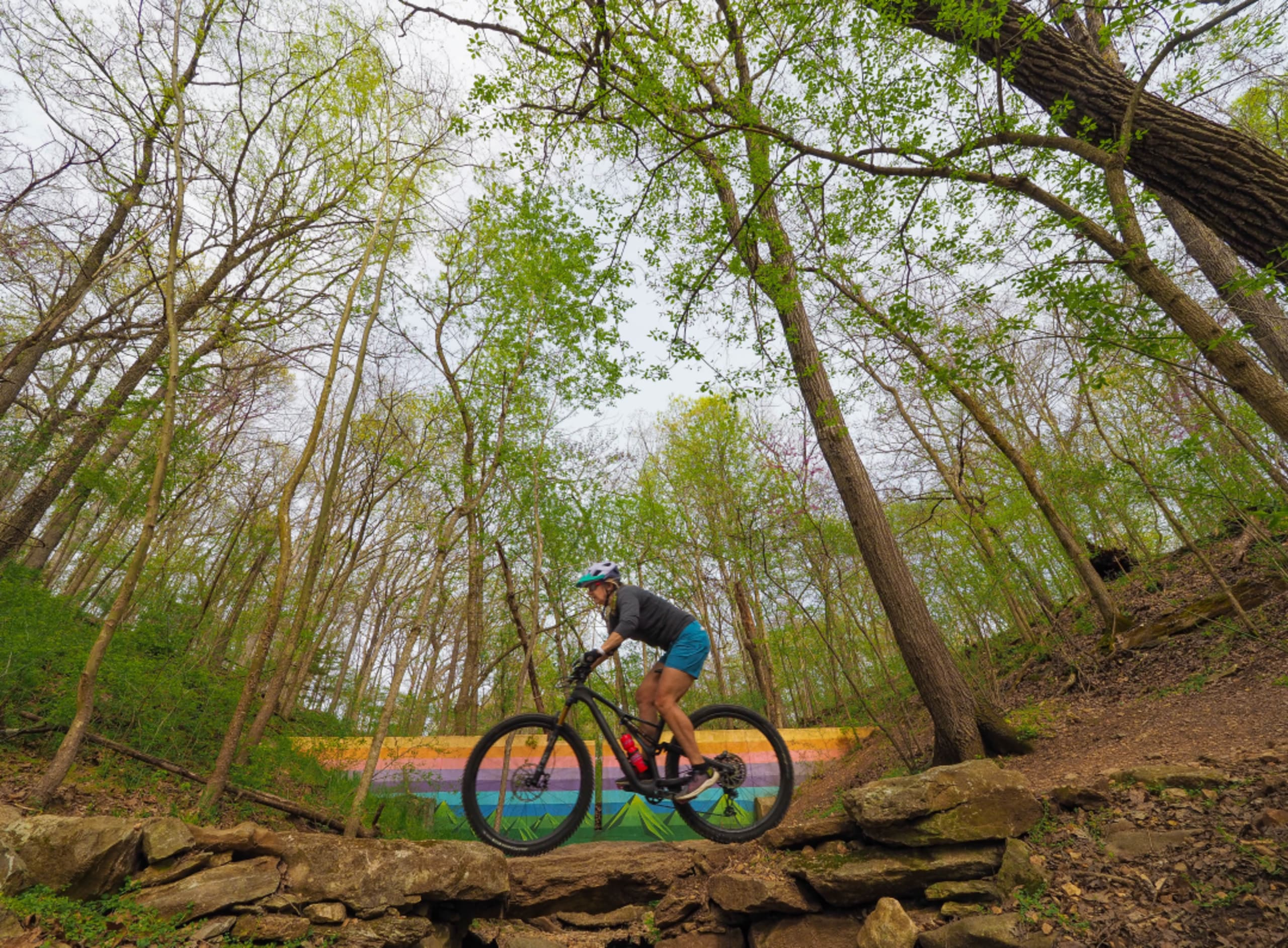 Bike to Bentonville for 150 miles of trails and much more