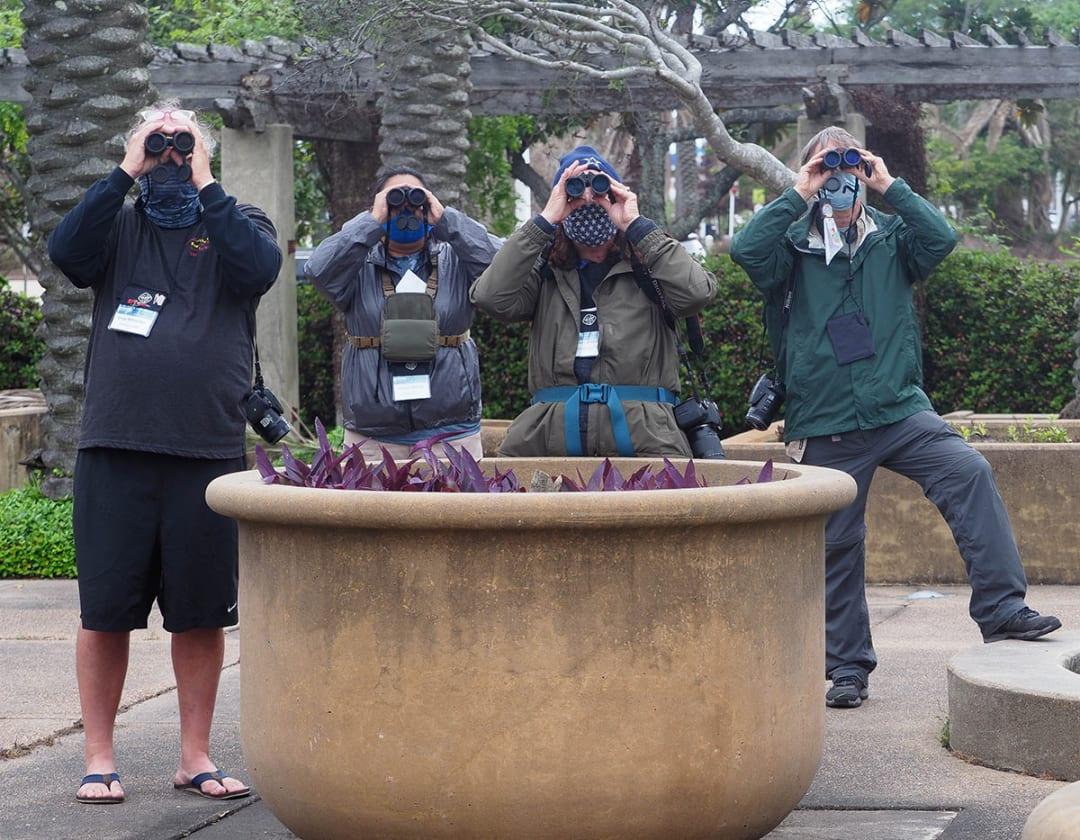 Becoming a birder at Galveston's FeatherFest