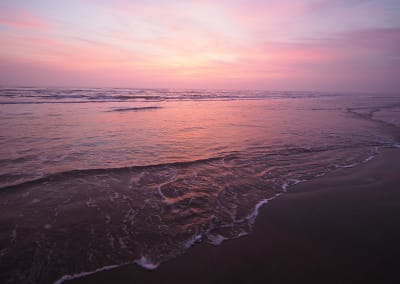 Fishing and Sea Turtles and Birding, Oh My: A weekend at South Padre Island