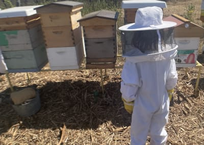 The buzz on being beekeeper for a day at Two Hives Honey in Manor