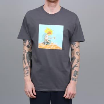 Iggy Electrified T-Shirt Ash