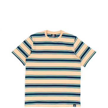 Dickies Lithia Springs T-Shirt - Peach Brulee