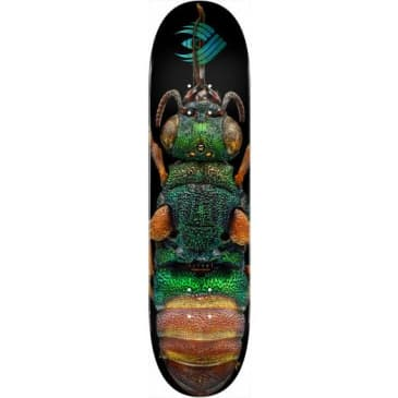 """Powell - Biss Ruby Tailed Wasp Flight Deck (8.5"""")"""