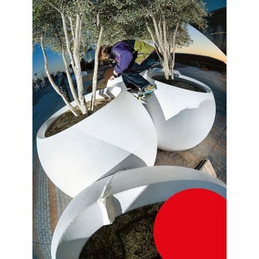 """FREE SKATEBOARD MAG-""""ISSUE 29"""""""