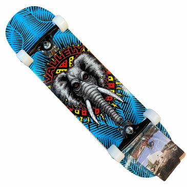 Powell Peralta Vallely Blue 8x31.3 Complete