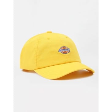 Dickies Hardwick 6 Panel Baseball Cap