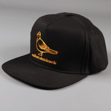 Anti Hero 'Basic Pigeon' Snapback Hat (Black / Orange)