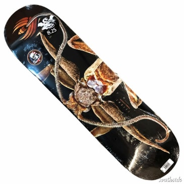 Powell Peralta Flight Deck Marion Moth 8.25x31.7