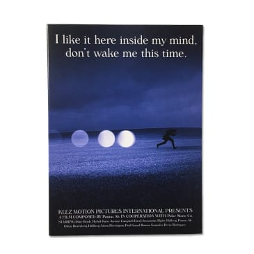 I like it here inside my mind, Don't wake me this time - The Polar DVD