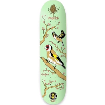 The Drawing Boards Goldfinch Skateboard Deck 8.25""