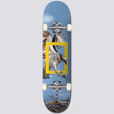 Element Skateboards X Nat Geo Team 'Osprey' Complete Skateboard 8.25""