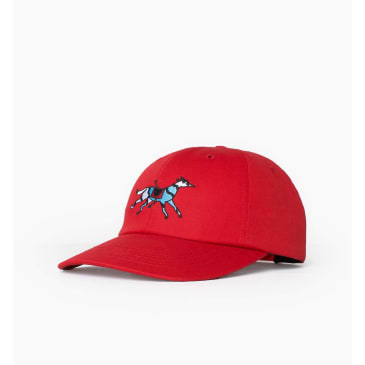by Parra - runaway horse 6 panel hat