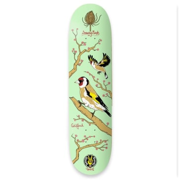 """The Drawing Boards Goldfinch Deck - 8.1"""""""