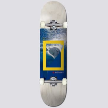 Element Skateboards X Nat Geo Greyson 'Shark' Complete Skateboard 8.25""