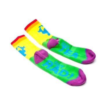 Proud Rainbow Socks