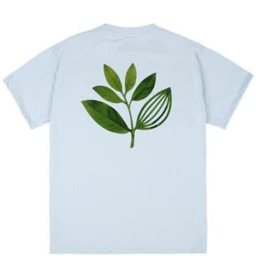 Magenta True Leaf T-Shirt - Light Blue
