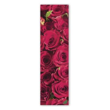 Mob Roses are Red Griptape