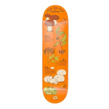 """Drawing Boards - Foraging Autumn Deck - 8.375"""""""