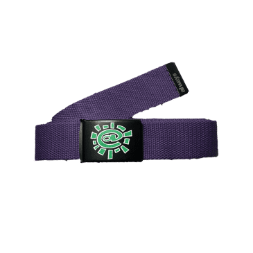 always do what you should do - purple silk screen belt