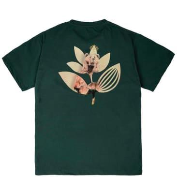 Magenta Bear Plant T-Shirt - Green