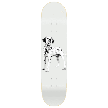 Quasi Skateboards - Quasi Good Boy Skateboard Deck | 8""