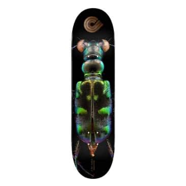 "BISS Tiger Beetle - 8.25"""