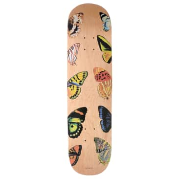 """Quasi Butterfly Deck 8.25"""" (Natural)"""