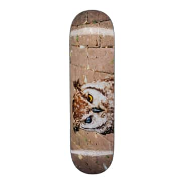 Fucking Awesome - Fucking Awesome Owl Photo Skateboard Deck | 8.38""