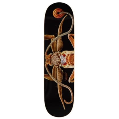 Powell & Peralta Deck - Marion Moth